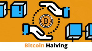 The Role of Halving And Inflation Hedge In Increasing BTC Value